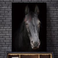 canvas painting Picture horse  wall painting art canvas Picture decor poster Wall art animals art print Wall Picture no frame