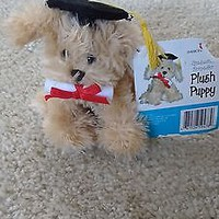 American Greetings Graduation Keepsake Plush Puppy