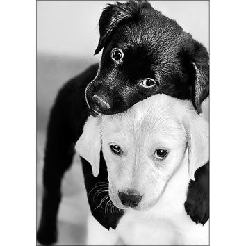 Collection D'Art Diamond Embroidery/Printed/Gem Kit 27X19cm-Black And White Puppies