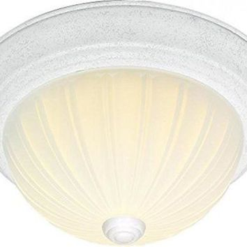 "Nuvo 76-129 - 15"" Close-To-Ceiling Flush Mount Ceiling Light"