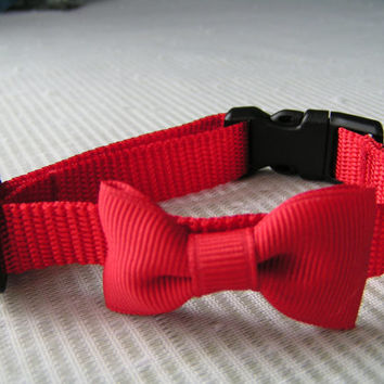 Red Collar and Bow Tie, Small Dog collars, Valentine and Everyday Wear. Always cute