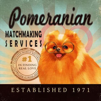 Valentine's Day Gift For Singles - Pomeranian - Matchmaking Services - 12X12 Modern Vintage Giclee Print - Mixed Media - LHA-296-37
