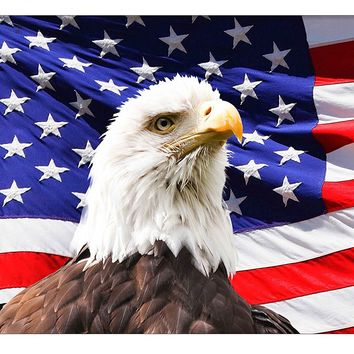 American Eagle and Flag Picture on Canvas Hung on Copper Rod, Ready to Hang, Wall Art Décor