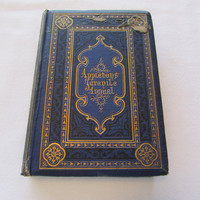 Appletons' Juvenile Annual for 1869 Antique Book