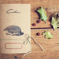 Hedgehog Notebook, 100% Recycled paper, eco-friendly journal, woodland travel diary