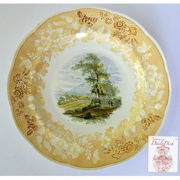 Circa 1818-46 RARE Yellow Butterfly Border THREE Color Transferware Plate Enoch Woods