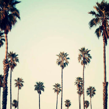 California Photography- Palm Trees, Retro, Urban Decor , Palm Art, Summer,  California Art, Palm Tree Print, Seagreen, Ombre