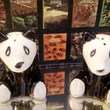 Vintage Japan Panda Salt and Pepper Shakers / Black and White Panda Shakers Japan