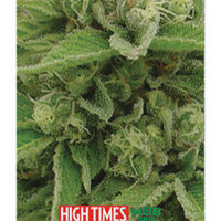 Mobgrip: 9x33 High Times Magazine Legends Ultimate Sheet