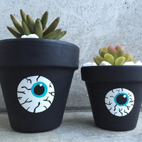 Succulent Terra Cotta Eyeball Inspired Matching Planters