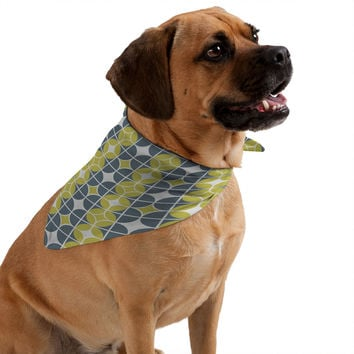 Heather Dutton Othello Pet Bandana