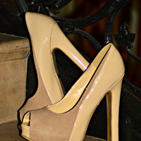 THE PERFECT PUMPS IN NUDE