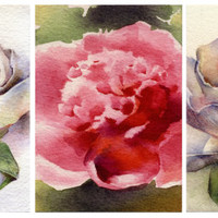 "Watercolor flower ACEO (3x) ""Peony"", watercolor painting, Print,  Artist Trading Card, archival watercolor paper"
