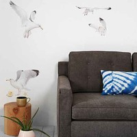Walls Need Love Seagull Wall Decal Set- White One