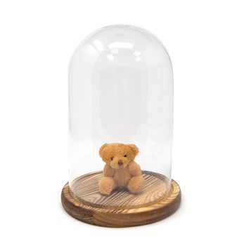 Clear Glass Dome Display with Wooden Base, 8-Inch