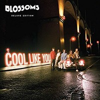 Cool Like You [VINYL] Import