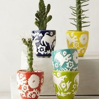 Concha Garden Pot Set by Anthropologie Assorted Set Of 5 House & Home