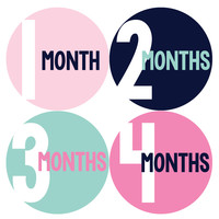 Baby Girl Monthly Baby Stickers Style #301
