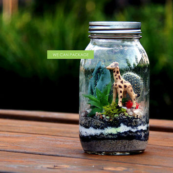7 Inches Mason Jar Terrarium Succulent Cactus Pebbles Moss Wood Piece Plant Zen Garden House Plants Indoor