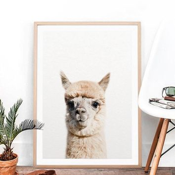 Baby Animal Alpaca Wall Art Canvas Print , Farm Animals Llama Art Canvas Painting Poster For Kids Room Nursery Wall Art Decor