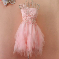 A 083124 s Embroidery lace tutu dress