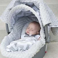 Chevy Carseat Canopy Whole Caboodle, Carseat Cover