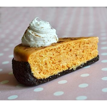 Pumpkin Cheesecake Polymer Clay Miniature Food Refrigerator Magnet