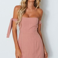 Who's That Girl Mini Dress Terracotta Rose