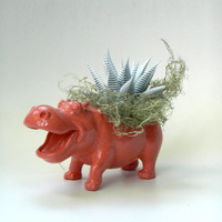 Coral Pink Hippo Succulent Planter - Mini Modern Art Animal Planter - Table Centerpiece & Party Favor