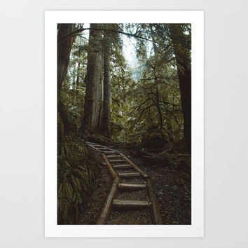 Forest Hike Art Print by Sterlinshaffer