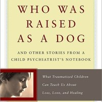BARNES & NOBLE | The Boy Who Was Raised as a Dog: And Other Stories from a Child Psychiatrist's Notebook: What Traumatized Children Can Teach Us About Loss, Love, and Healing by Bruce D. Perry, Basic Books | Paperback, NOOK Book (eBook)