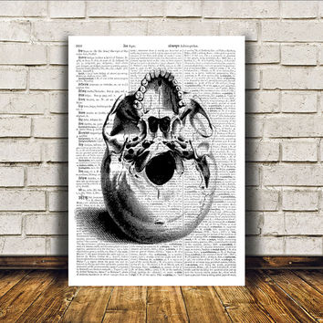 Human skull poster Anatomy art Modern decor Dictionary print RTA213