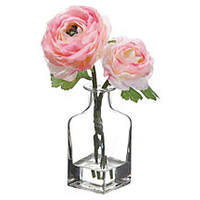 "8"" Ranunculus in Glass Vase, Pink"