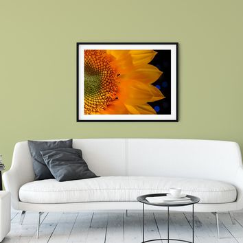 Floral Nature Photograph Close-up Sunflower - Fine Art Canvas Prints - Home Decor Unframed Wall Art Prints