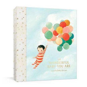 The Wonderful Baby You Are: A Record of Baby's First Year, Baby Memory Book with Stickers and Pockets by Emily Winfield