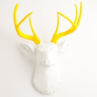 The Baron - White W/ Yellow Antlers Resin Deer Head- Stag Resin White Faux Taxidermy