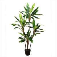 """55.25"""" Decorative Potted Artificial Two Tone Green and Red Dracaena Plant"""