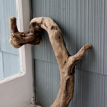 Sculptural Driftwood Art for Home Decor and Event Display , Driftwood Sculpture , Beach Wedding , Beach Decoration