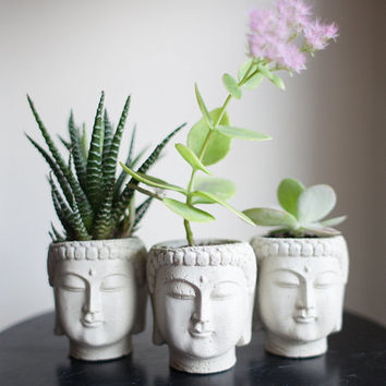 Set of Three Small Buddha Head Planters, Save 5 Dollars, Discount, Housewarming Gift, Garden Decor, Succulent Planter, Cement Planter