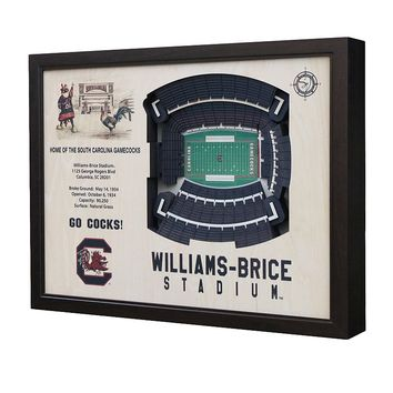 South Carolina Gamecocks StadiumViews 3D Wall Art (Scr Team)