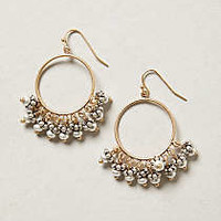 Anthropologie - Galassia Hoops