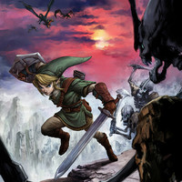 The Legend of Zelda: Twilight Princess Link Video Game Poster