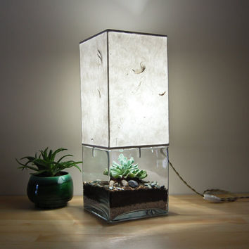 Large Square Base Terrarium/Display Table Lamp, with Handmade Paper Lampshade