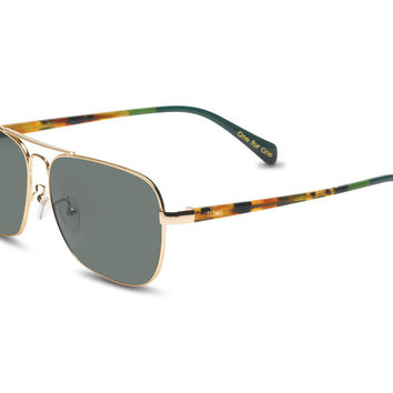 Toms - Navigator Shiny Gold and Panama Tortoise Sunglasses, Green Grey Lens