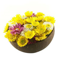 lacquer coconut shell bowl, ring bowl, flower bowl, firework design