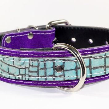"Purple Suede Leather Dog Collar - 1-1/2"" "" Dual Layer Light Turquoise And Purple Suede Leather Dog Collar - Exotic Leather Dog Collar"