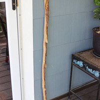 Walking Stick , Natural Driftwood branch with bark  , Boho Curtain Rod , Clothed Hanging Rod