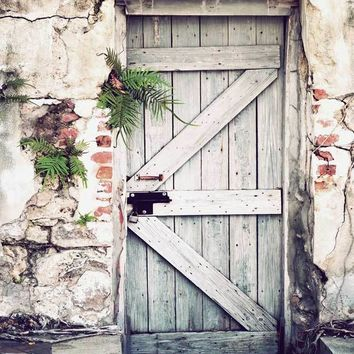 Rustic Wooden Door Plant Brick Wall Platinum Cloth Backdrop 5x6 - LCPC6322 - LAST CALL