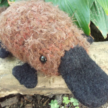 Platypus plush, stuffed animal platypus, knitted and felted wool, platypus amigurumi, ready to ship!