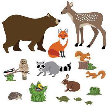 Large Woodland Animal Wall Decals, Eco-Friendly Peel and Stick Fabric Wall Stickers